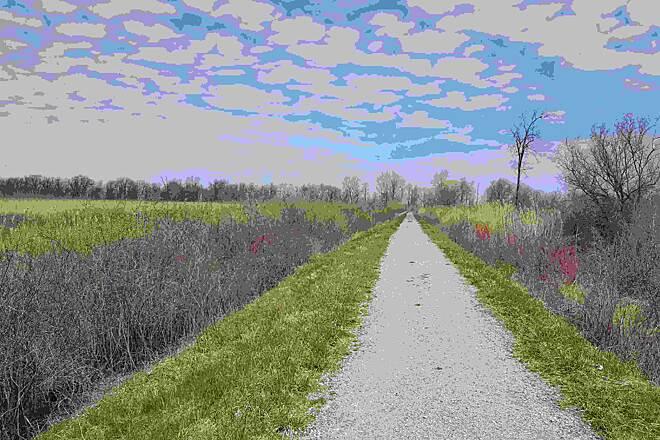Chippewa Nature Center Midland Township Mi