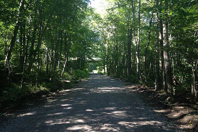 Air Line State Park Trail Just west of Pomfret Station