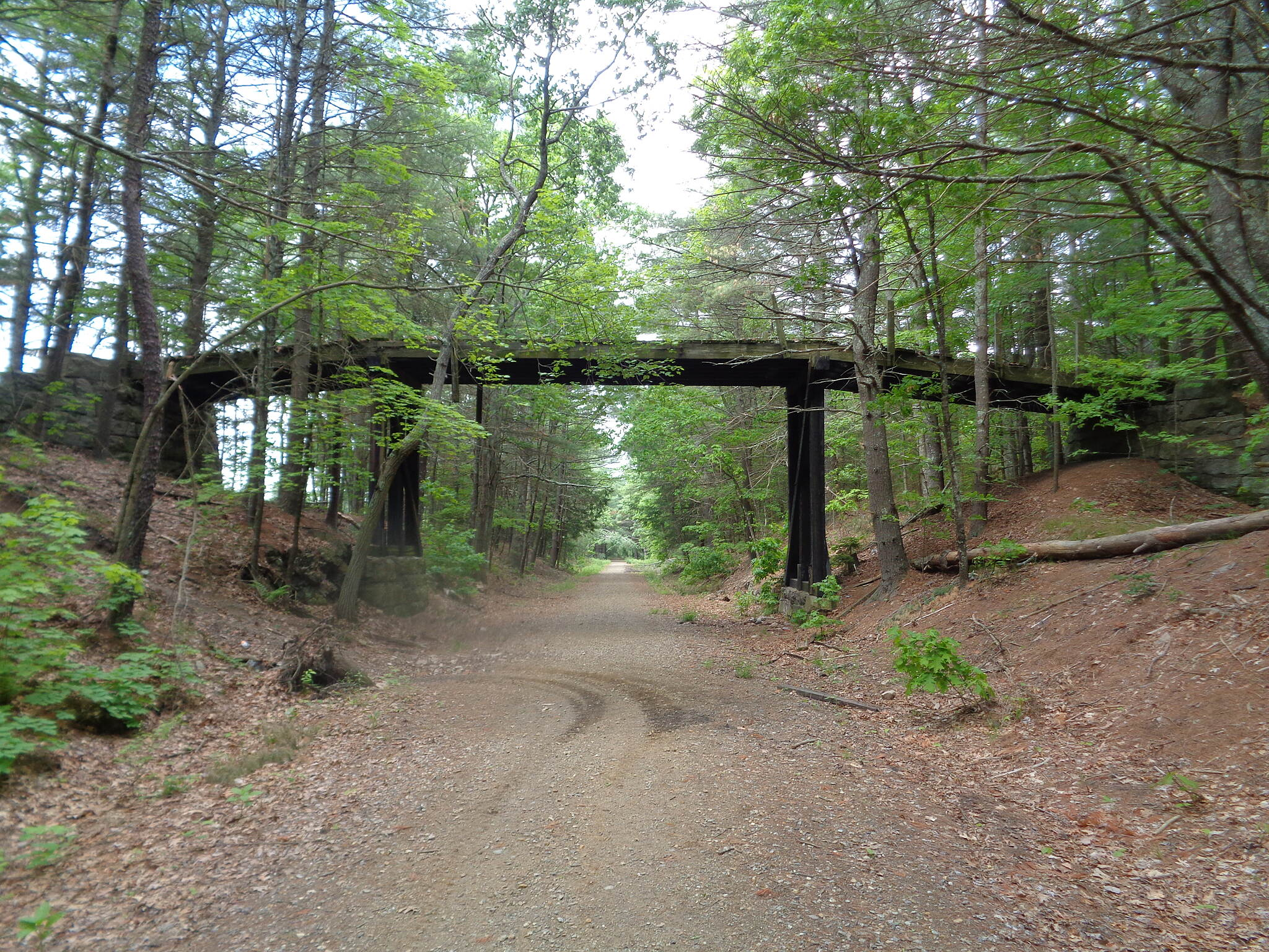 Air Line State Park Trail Old cattle bridge, Thompson Looking west at old cattle bridge over the Airline, just west of the MA/CT state line in Thompson, CT 6/4/16. Bridge is very near an old buried stone enclosure of unknown origin.