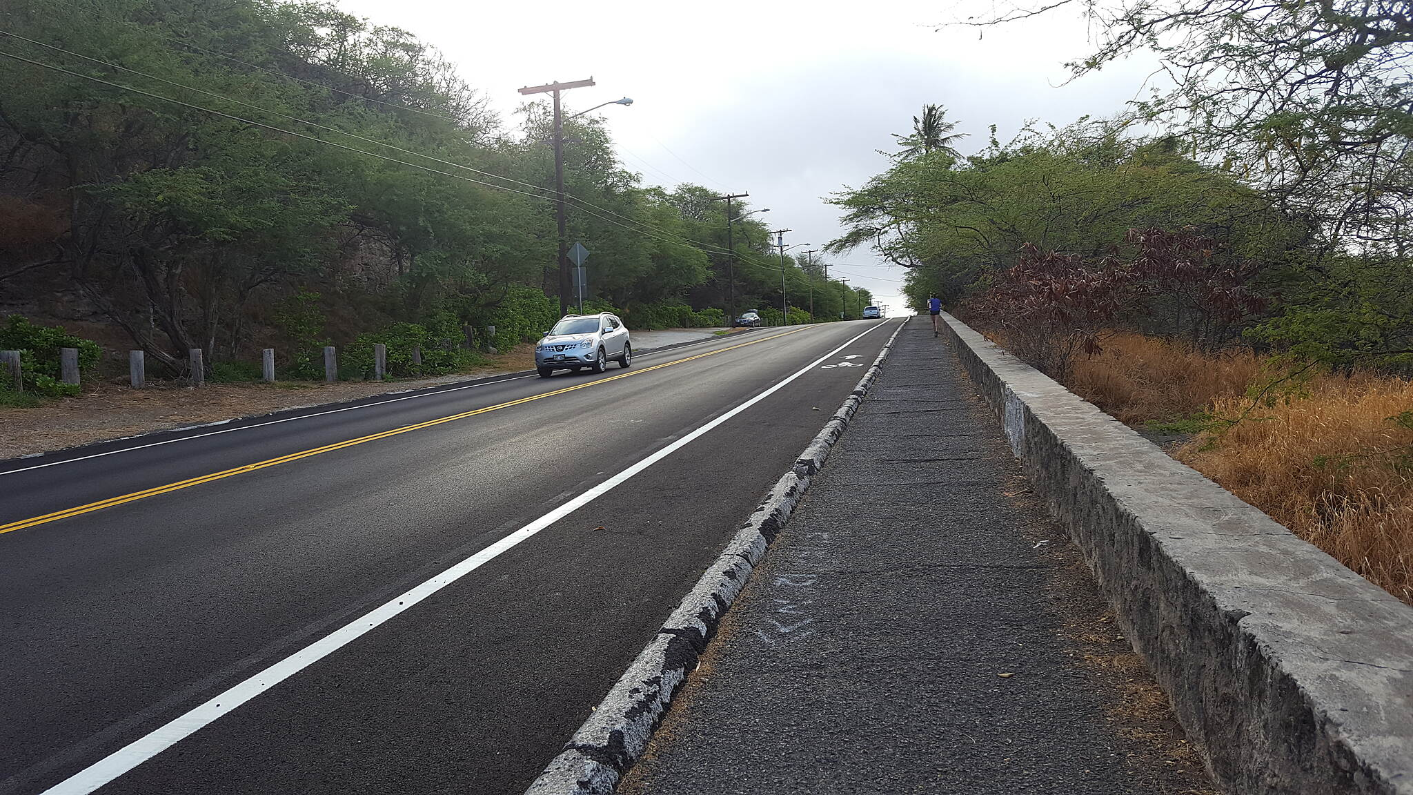 Ala Wai Canal Promenade Leading2diamondhead Long run til up hill