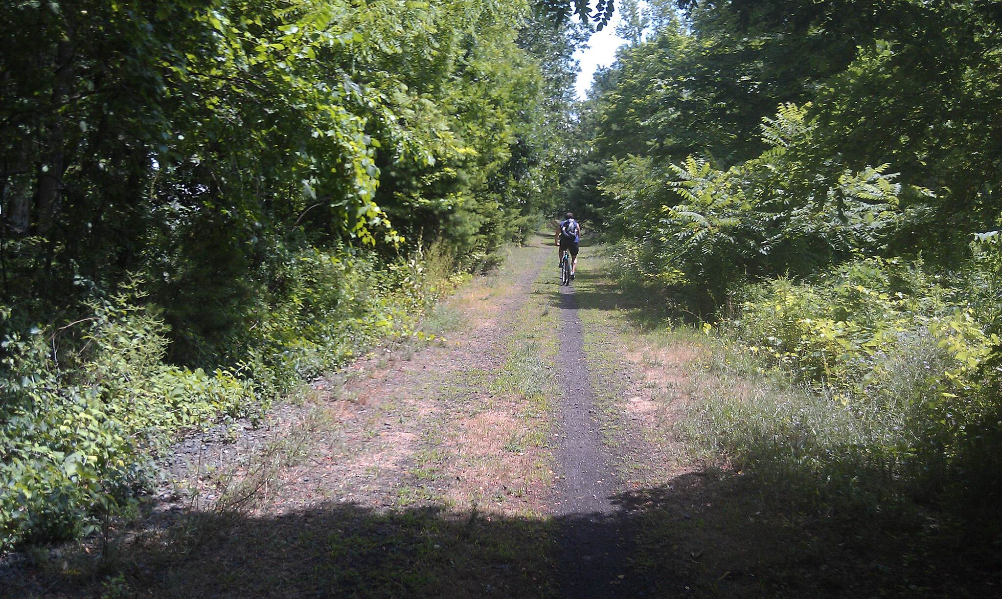 Albany County Rail Trail Albany County Rail Trail Beginning of trail at New Scotland Rd.