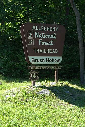 Allegheny National Forest - Brush Hollow XC Ski Trail Signage Allegheny National Forest - Brush Hollow, Signage