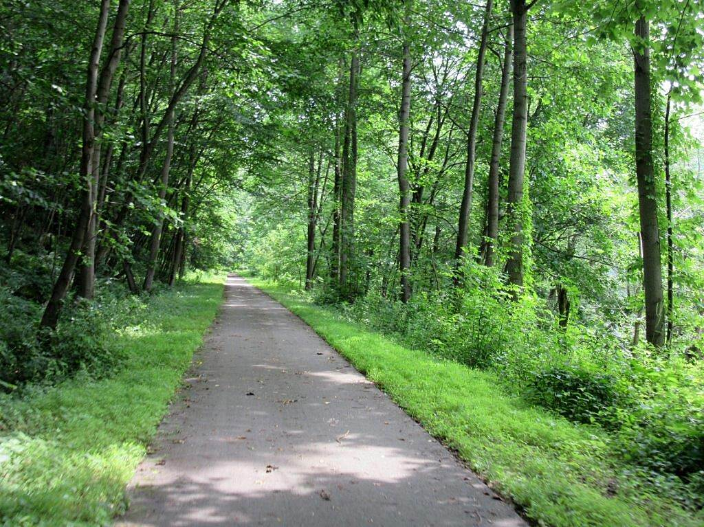 Allegheny River Trail July 2015 July 2015 along the trail which follows the Allegheny River