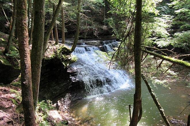 Allegheny River Trail Freedom Falls-July 2015 Freedom Falls.  To get there you exit the trail, go up the road, uphill and the woods along the right side is where the falls are.  About 15 minutes trek from the trail.
