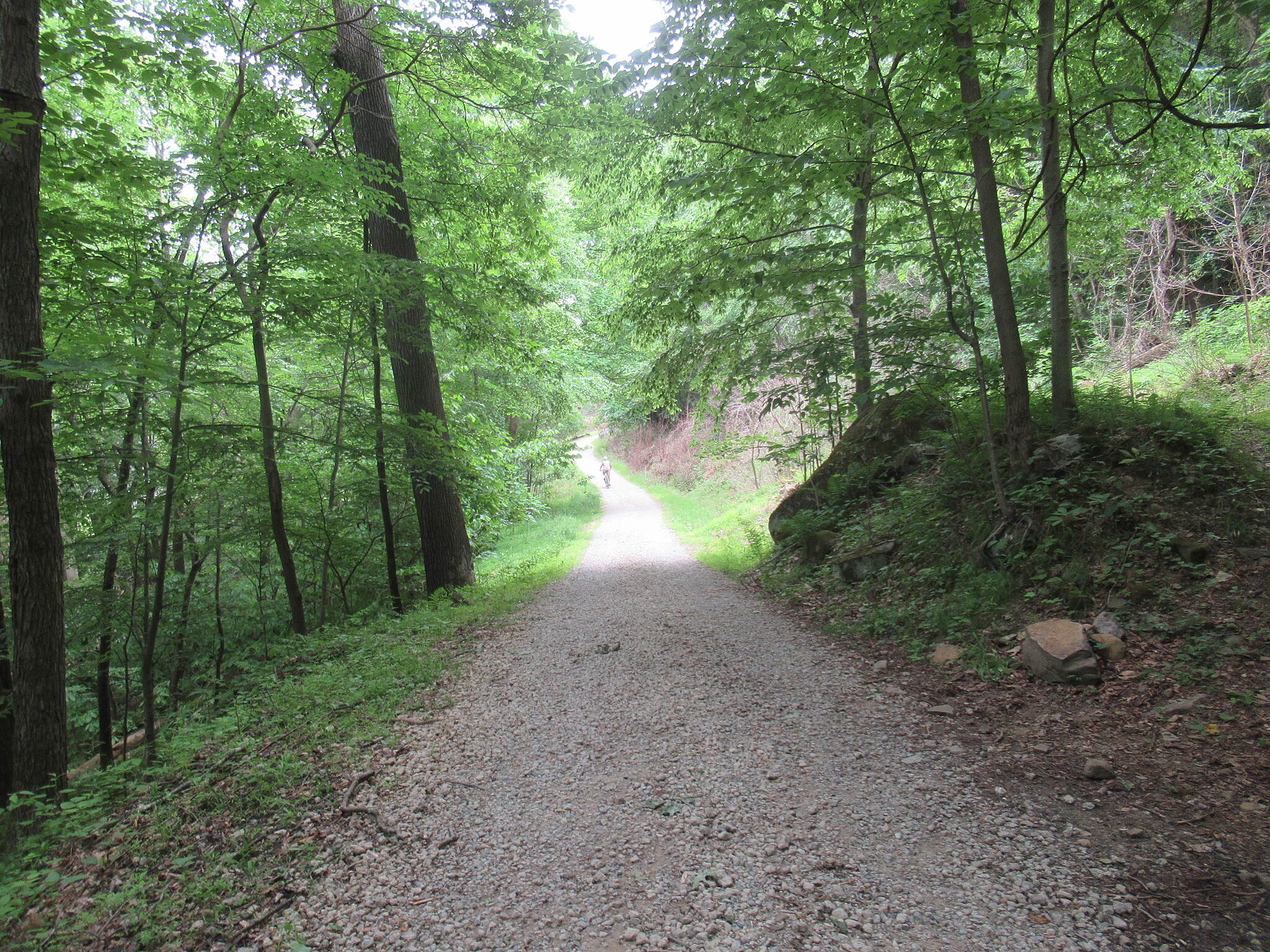 Allegheny River Trail Dirt Road  Dirt road section of the trail is approx 2 miles of bumpy gravel