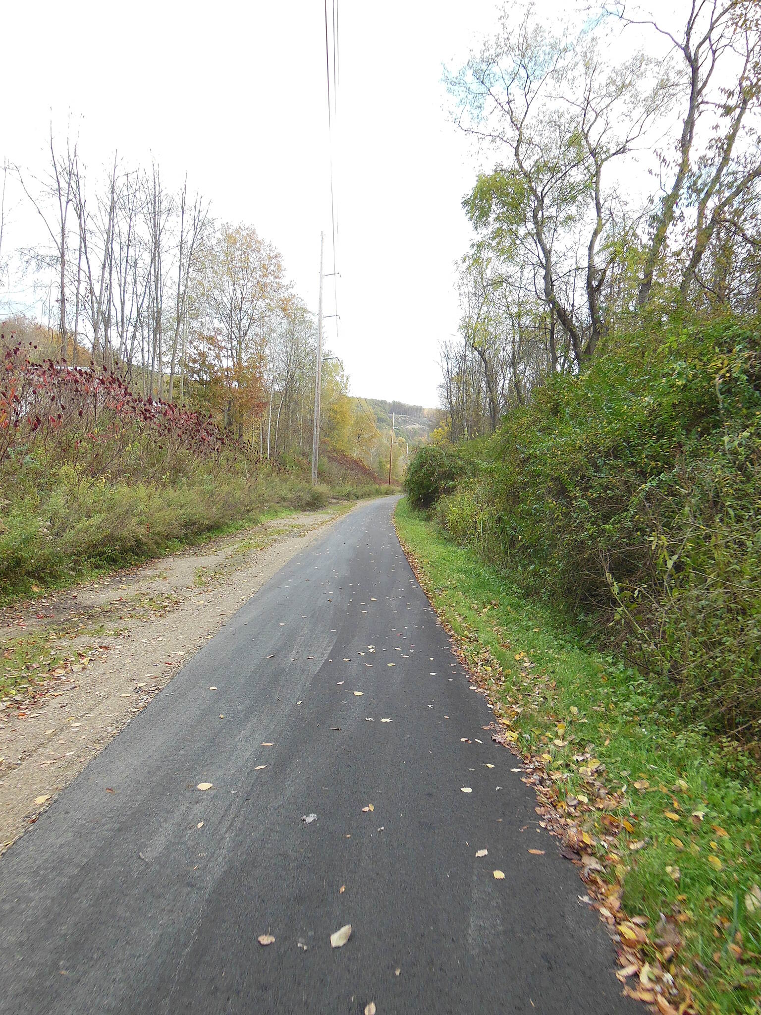 Allegheny River Trail The trail surface The trail surface is absolutely beautiful and easy to ride.