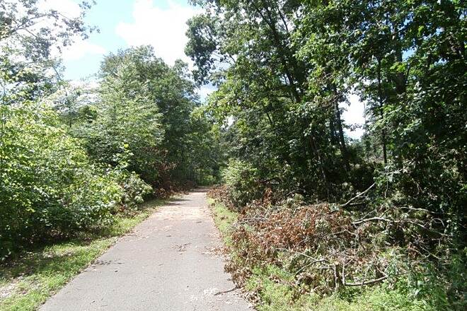 Allegheny River Trail Trail along the trail following some recent storms.  Thanks to those who cleaned up the trees.