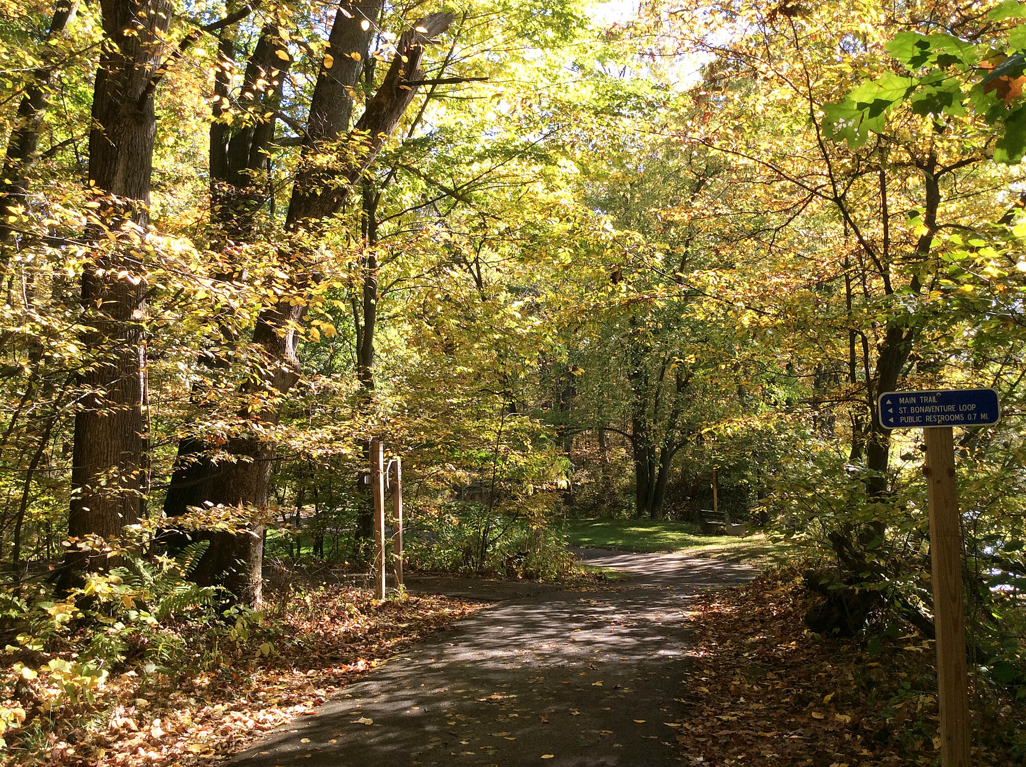 Allegheny River Valley Trail The tree-lined trail offers beautiful fall foliage. Photo courtesy Cattaraugus County Tourism