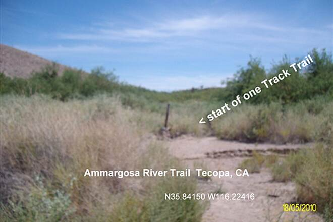 Amargosa River Trail Amargosa River Trail Start of Trail going South