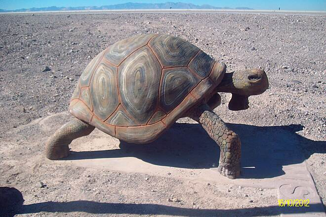 Amargosa Trail Sculpture on Amargosa Trail Desert Tortoise