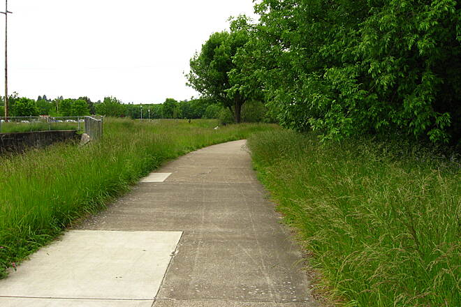 Amazon Path Amazon Path in Amazon Park Photo by Chris Phan, shared under Creative Commons license 2.0