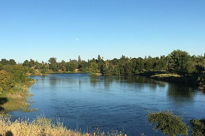 American River Bike Trail (Jedediah Smith Memorial Trail) perfect for bird watching