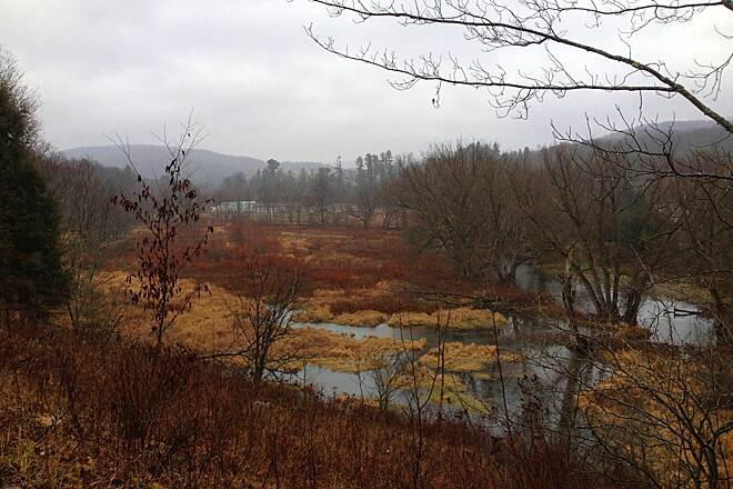 Andes Rail Trail Fall View from the Rail Trail Beaver Pond.  Photo by Martin Daley