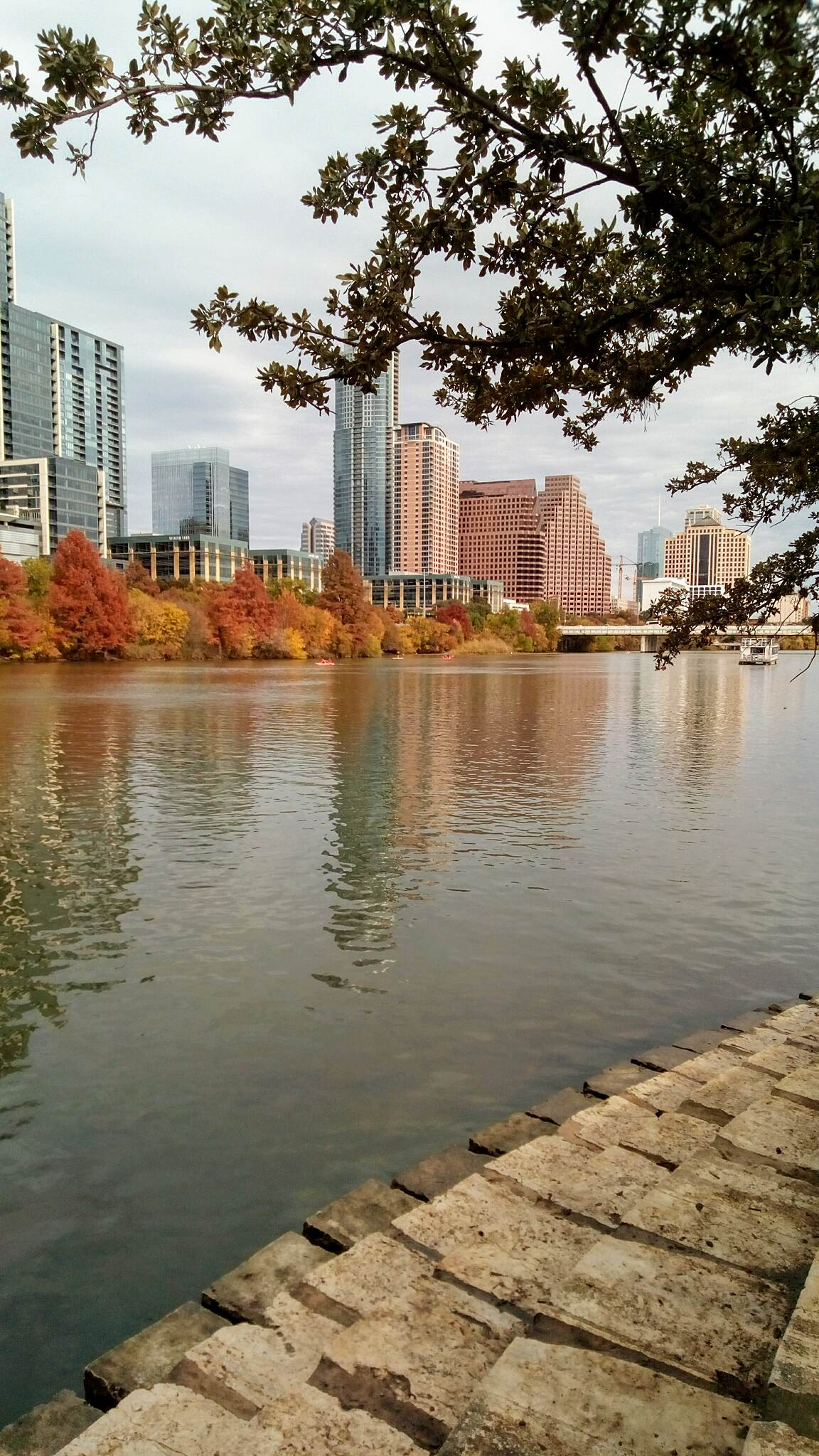Ann and Roy Butler Hike and Bike Trail Austin skyline viewed from the ARB Trail in fall