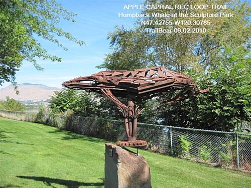 Apple Capital Recreation Loop Trail APPLE CAPITAL RECREATION LOOP TRAIL Over in the sculpture garden - Humpback Whale