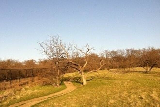 Arbor Hills Trail Outer Loop - East Side 3/20/14
