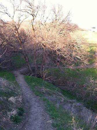 Arbor Hills Trail Outer Loop - 3/20/14