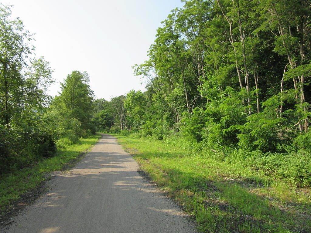 Armstrong Trail Trail-July 2015 Along the trail-July 2015