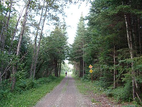 Aroostook Valley Trail