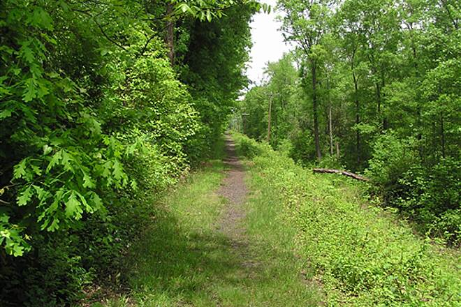 Ashland Trolley Line Trail Facing North