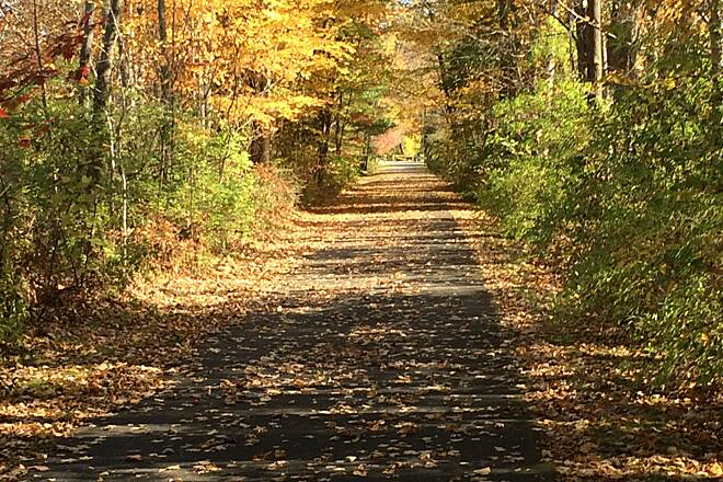 Ashuwillticook Rail Trail Great walk along the Rail Trail in Cheshire, Ma Autumn 2019 will stand out, in New England, for being particularly spectacular.  Took these pictures on October 13 on a gorgeous fall day.