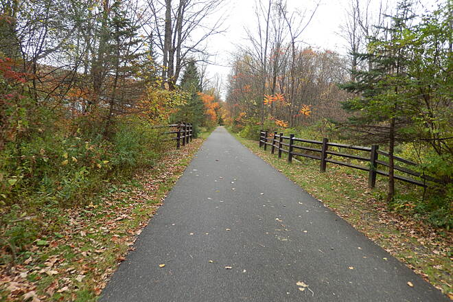 Ashuwillticook Rail Trail AUTUMN IN OCTOBER FALL FOLIAGE IS SO BEAUTIFUL IN THE BERKSHIRES