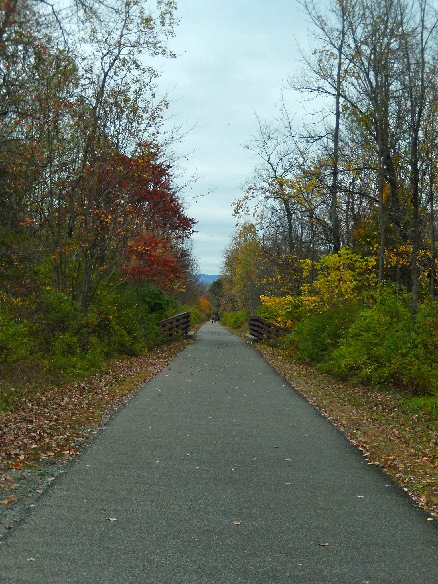 Ashuwillticook Rail Trail AWESOME FALL FOLIAGE THIS IS TRULY MOTHER NATURE AT HER FINEST!