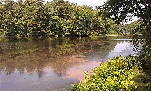Assabet River Rail Trail Assabet River - Maynard-Stow Assabet River as seen from the Maynard-Stow section of the ARRT