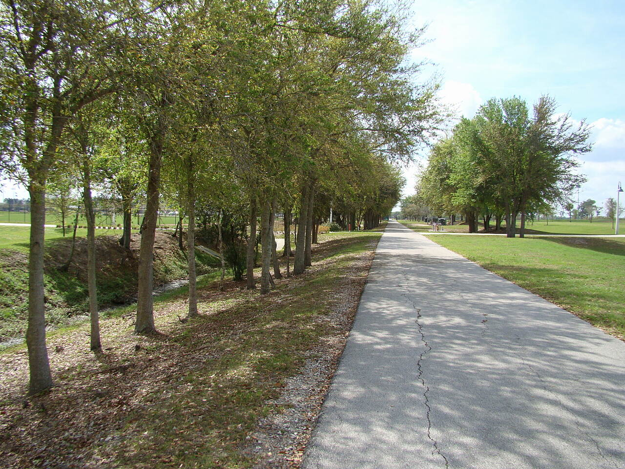 Auburndale TECO Trail TECO trail Along the way