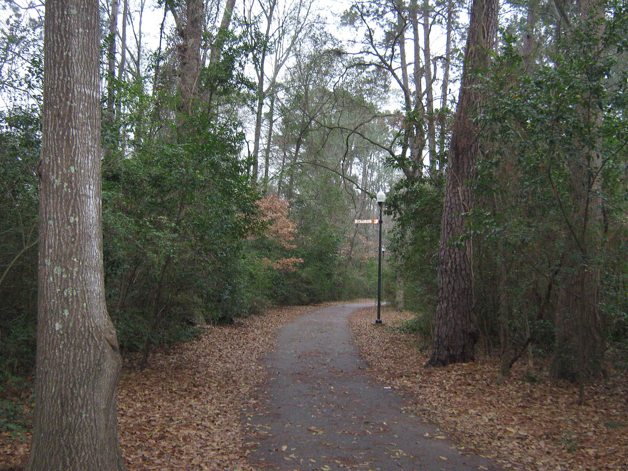Azalea Trail Azalea Trail - Lufkin Beautiful pathway