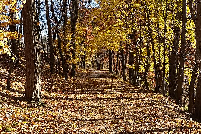 Back Mountain Trail Late Autumn