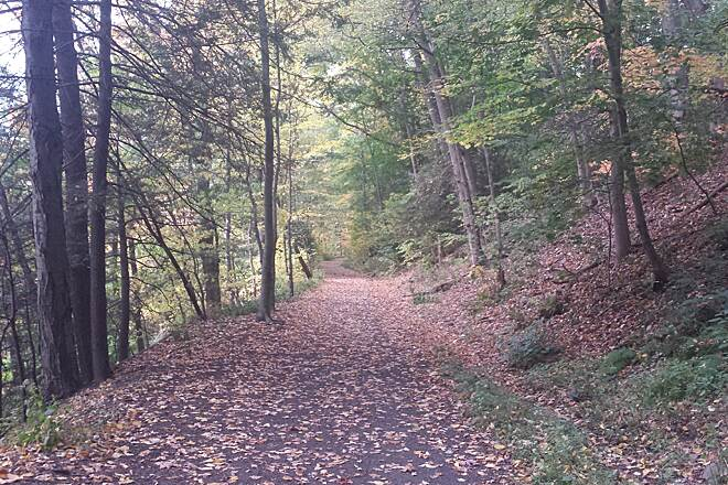 Back Mountain Trail Early Fall 2014