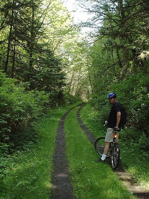 Banks-Vernonia State Trail Green and clean... The trail south to Manning is beautiful with tracks like this.