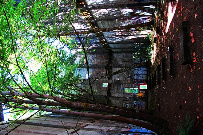 Banks-Vernonia State Trail Ruins of the Oregon-American power plant. An impressive structure, what remains of it.  Trees are actually growing inside the structure and local 'artists' try their hand with spray paint.  Actually, some are quite good and very creative.