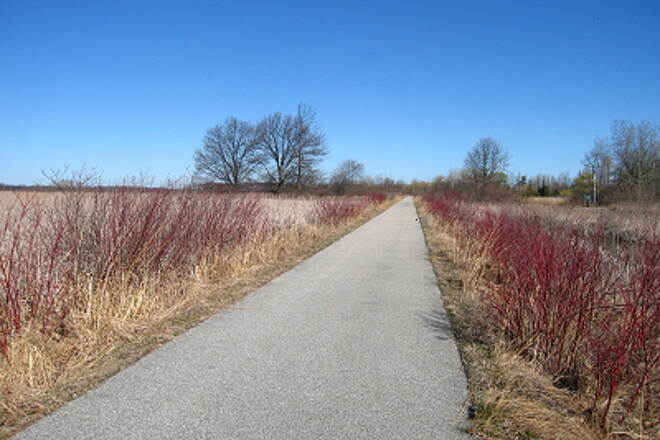 Bay County Riverwalk/Railtrail System Andersen Nature Trail Looking north on trail, not far from the northern trailhead