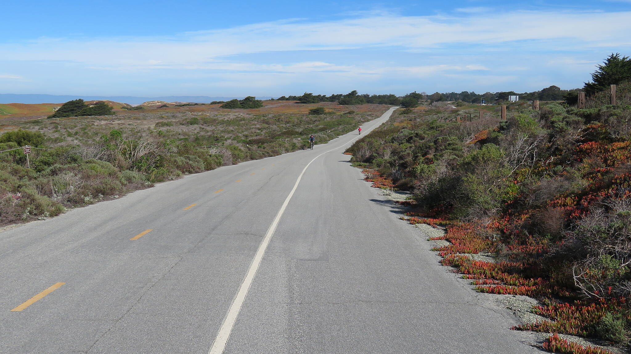 Beach Range Road Multi-Use Trail Fort Ord Dunes State Park Trail Wide road, space for everyone.