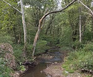 Pennsylvania Dog Walking Trails & Trail Maps | TrailLink