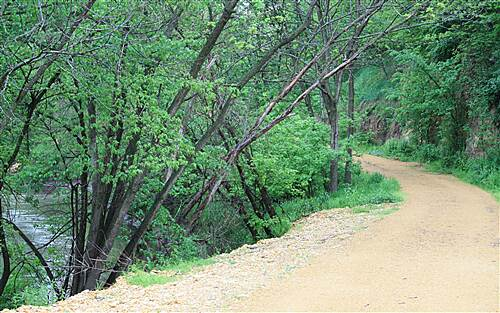 Bear River Recreation Trail Here is a creek that runs into the Maquoketa River just up the trail This section was added to gain access to the old rail bed. That trail starts were once a bridge stood to cross this creek.