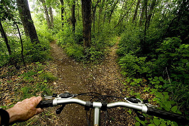 Beaver Island Trail Beaver Island Trail Image provided by Ted Sherarts