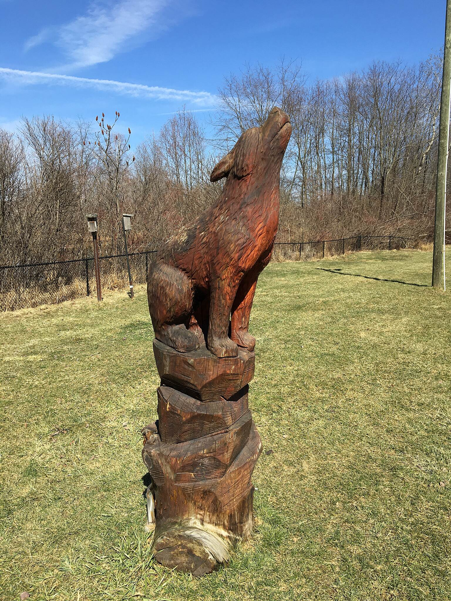 Beaver Meadow Trail Woodcarving along Eastern Trail
