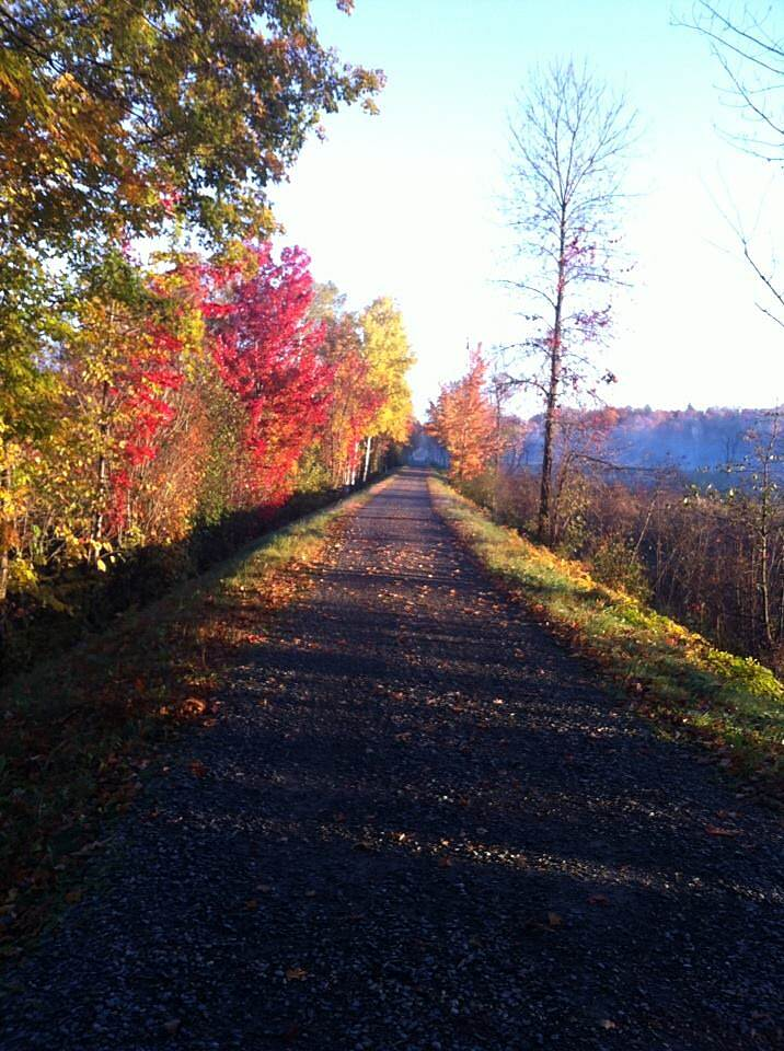 Beebe Spur Rail Trail The trail in the fall Photo by Beth Barnes