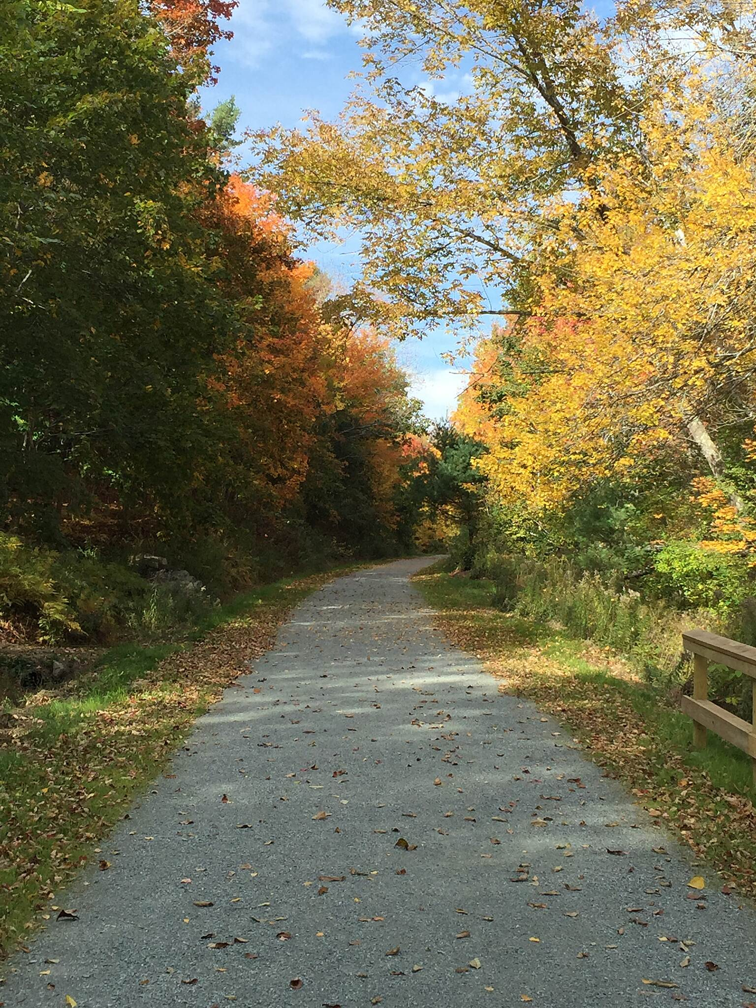 Belfast Rail Trail on the Passagassawaukeag Autumn Colors along the Passy