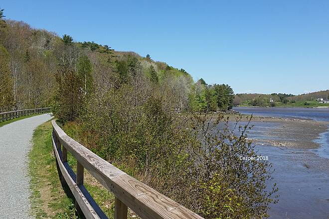 Belfast Rail Trail on the Passagassawaukeag Riverside View Looking north