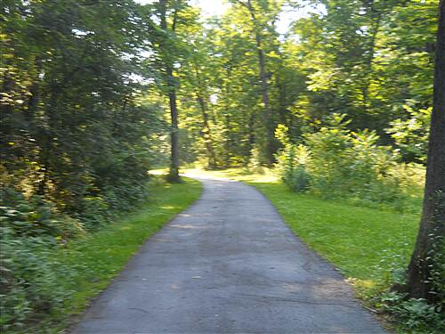 Bellefonte Central Rail Trail in the woods