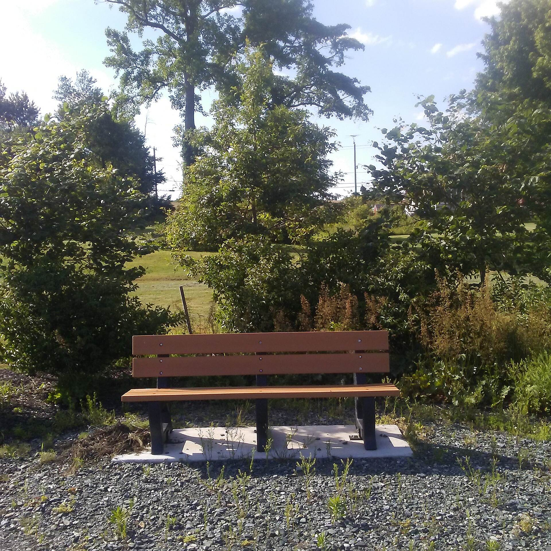 Ben Cardin C&D Canal Recreational Trail Ben Cardin C&D Canal Recreational Trail One of the few negative aspects of the trail is the lack of shade, which can make it very hot and sunny in the warmer months of the year. This problem should be rectified in the near future as the shrubbery grows around these benches.