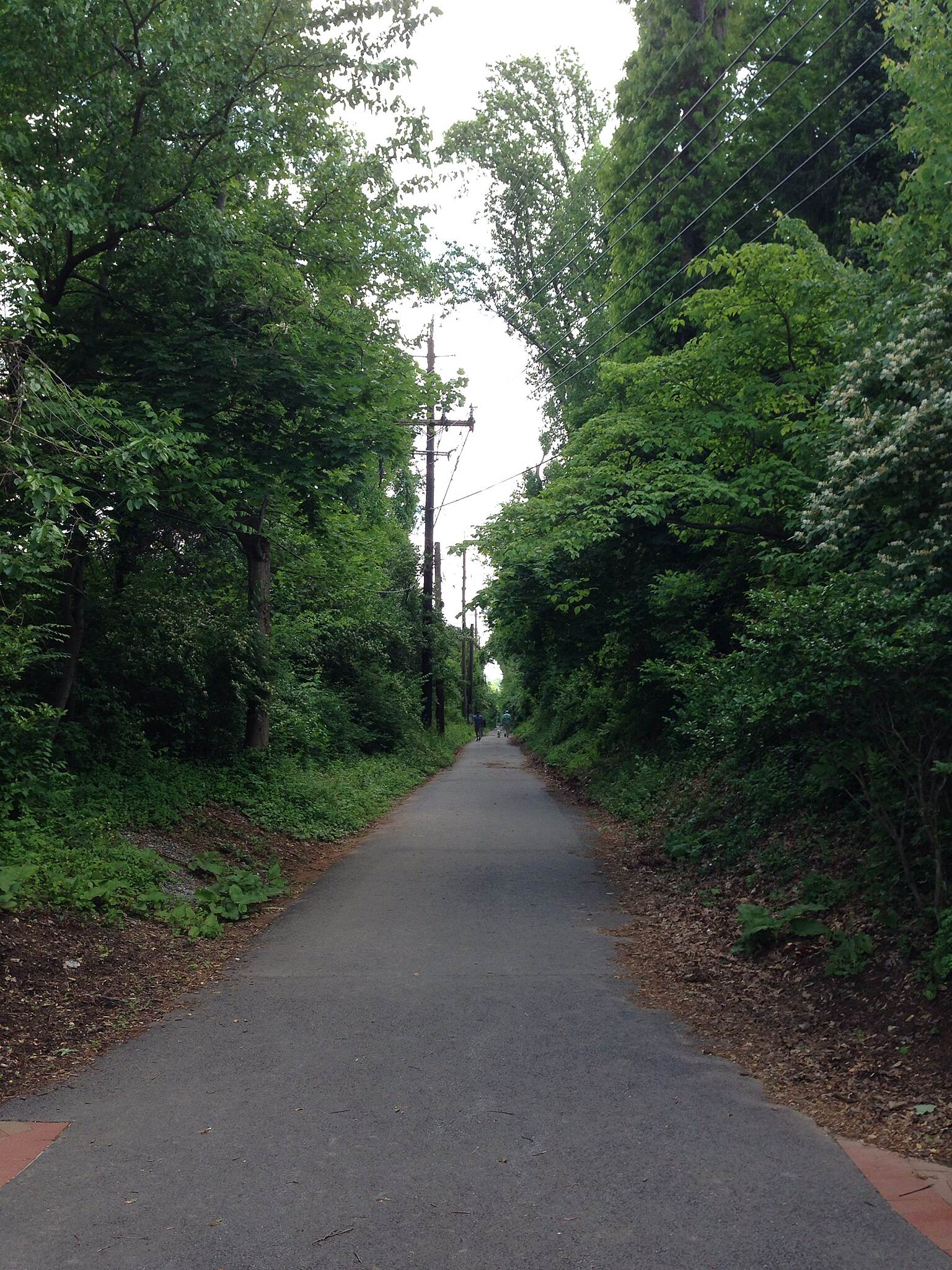 Bethesda Trolley Trail Bethesda Trolley Trail	 Photo submitted by traillink user jpreeg