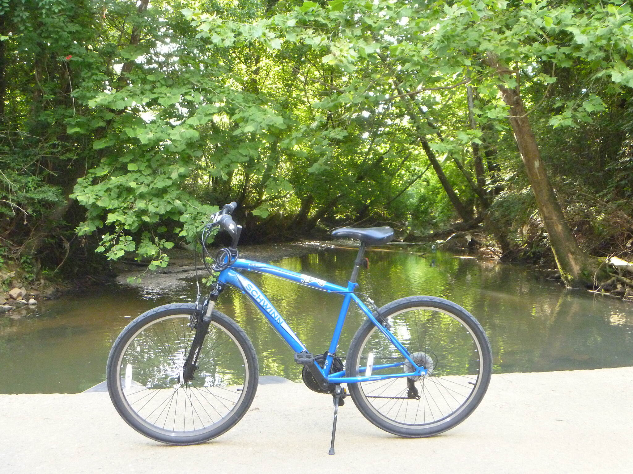 Big Cove Creek Greenway My babe