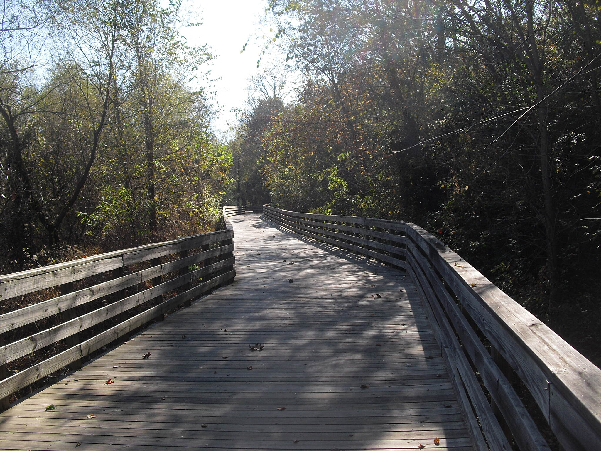 Big Creek Greenway Big Creek Greenway boardwalk Long boardwalk near Old Alabama Rd. trailhead.