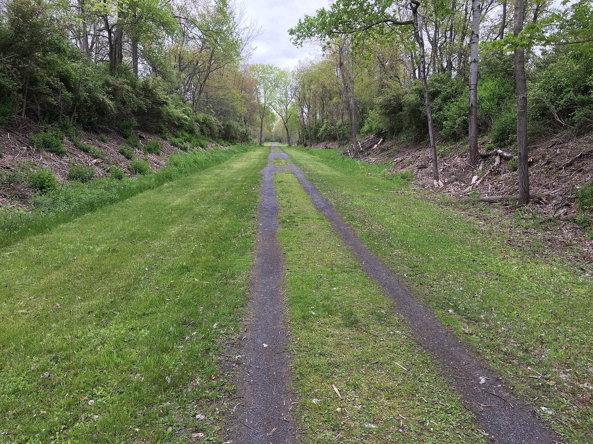 Big Flats Trail Big Flats, NY. Rails-to-Trails Facing west on trail (east of Sperr Memorial Park). May 2017. Lots of rain over past year.