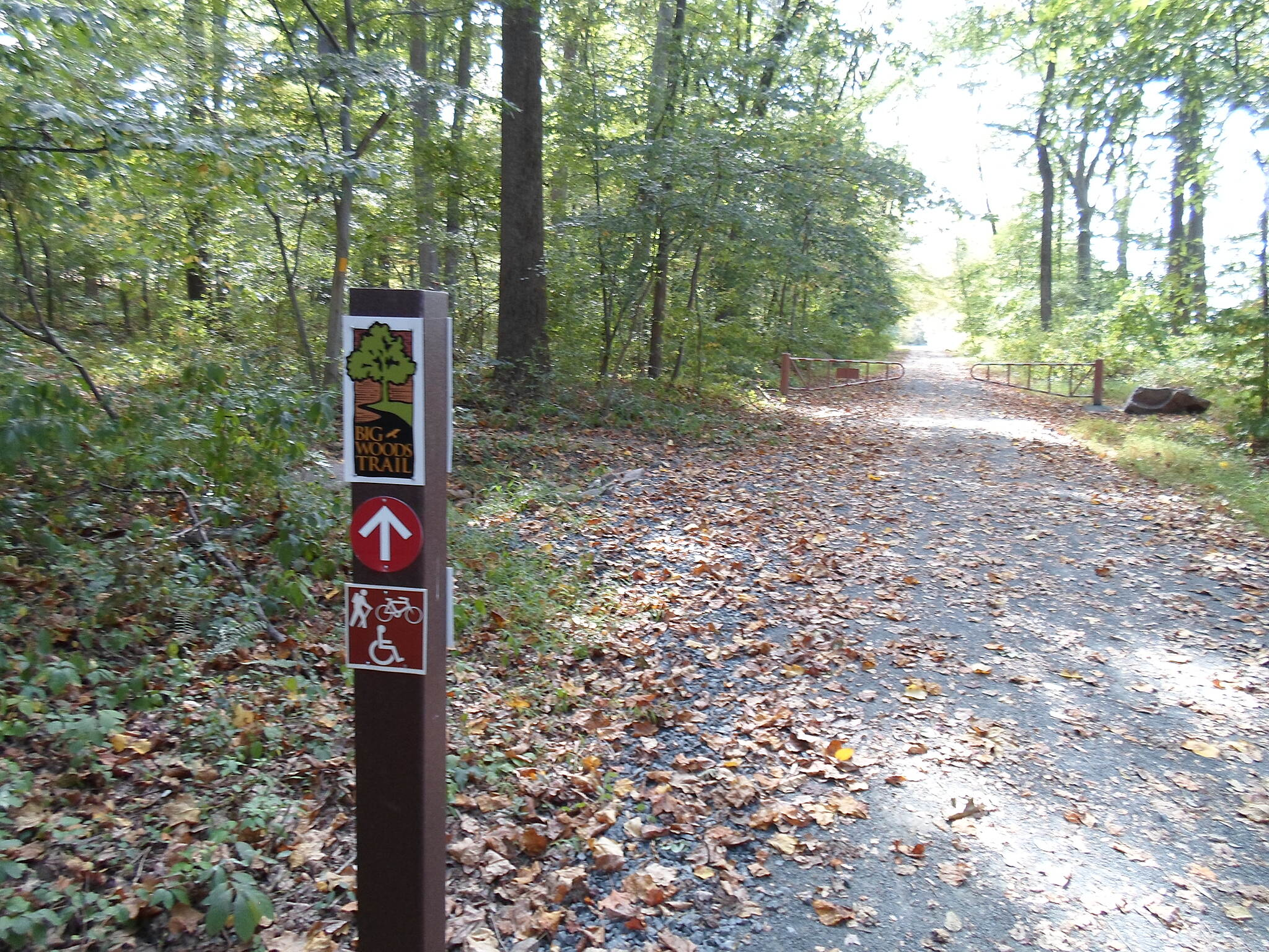 Big Woods Trail Big Woods Trail Approaching the bollards that mark the boundary between the Hopewell Iron Furnace Historic Site and the neighboring French Creek Lake State Park.